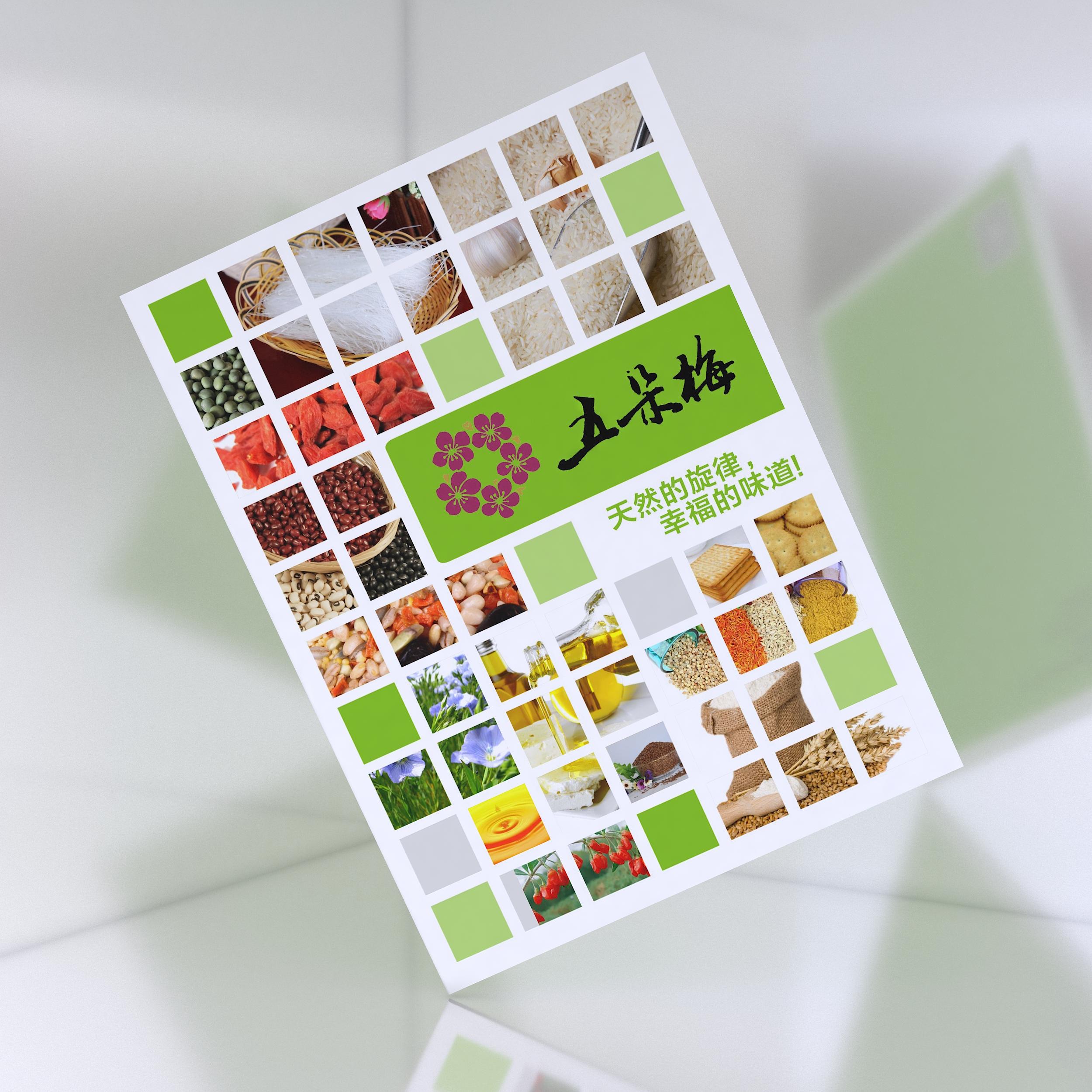 五朵梅食品画册设计
