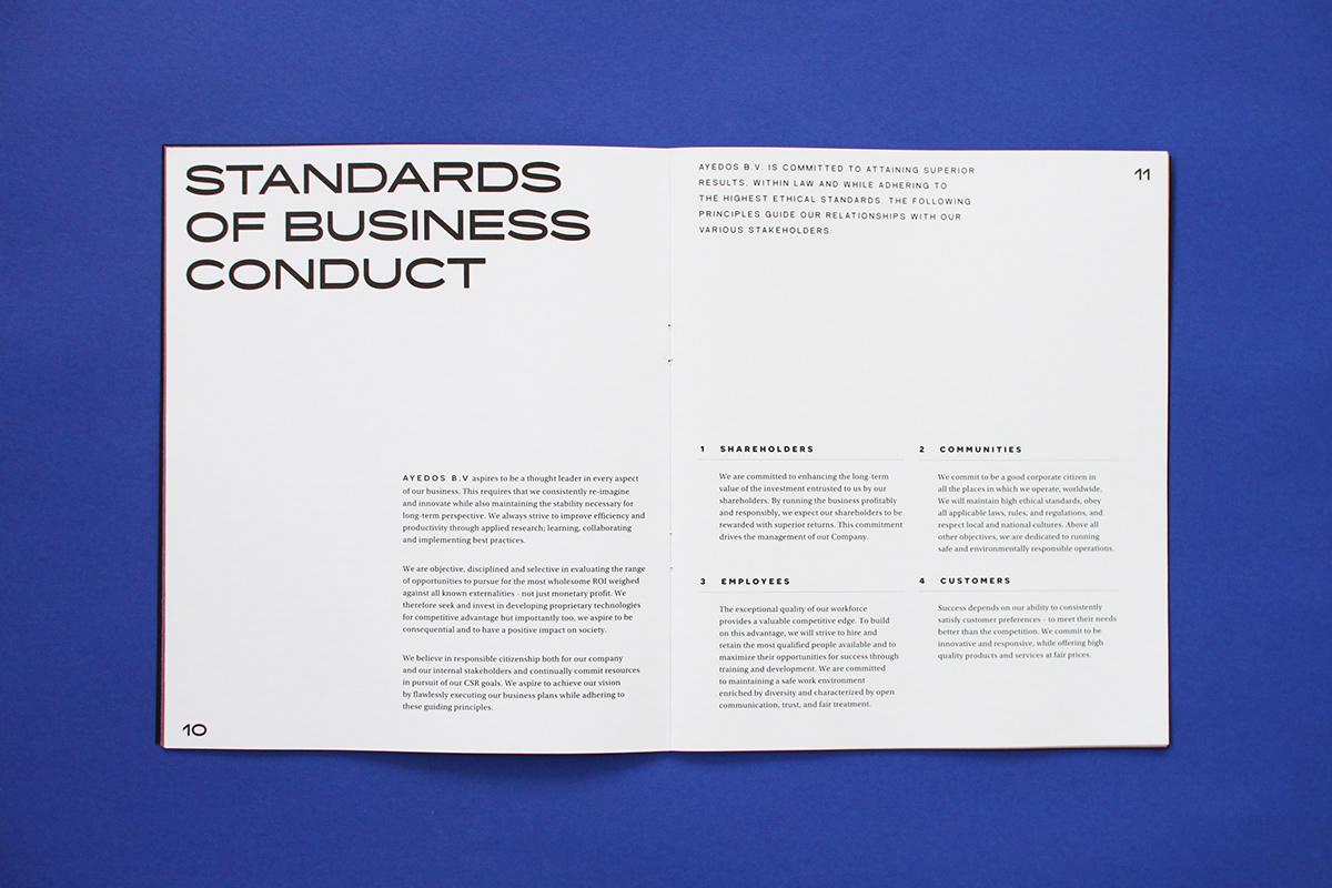 专业严谨的科技宣传册设计-5