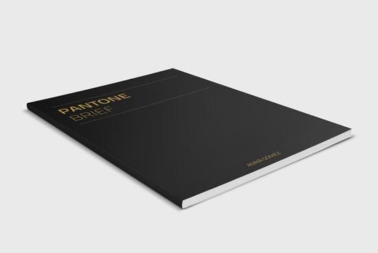 国外优秀画册设计作品-1