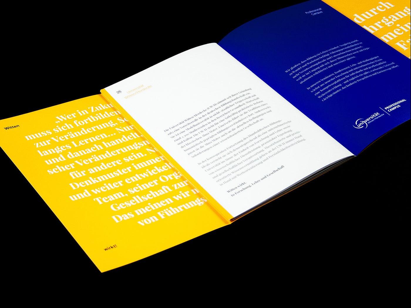 学校招商宣传册设计