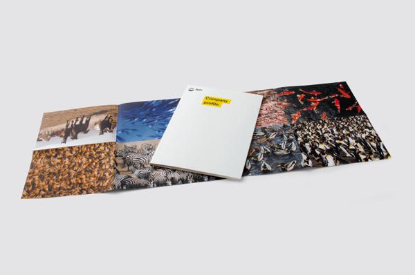 集团画册设计,精装高档